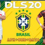DLS 2020 Mod APK Money Brasileirao Download